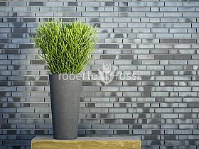 Planta naturala in ghiveci Metal Zinc Jewel Partner