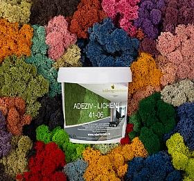 Adeziv 1 kg pentru lipire cca 6-7 cutii 500g licheni conservati