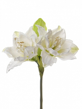 Amaryllis 41 cm alb