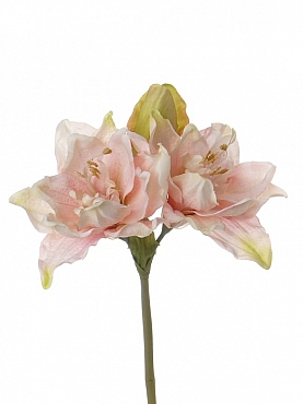 Amaryllis D15xH41 cm roz 86995