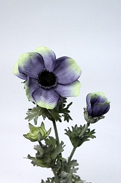 Anemona 45 cm HO albastru