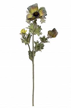 Anemona D7xH45 cm HO gri