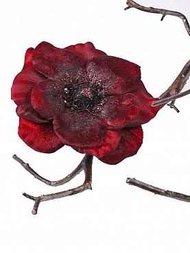 Anemone D11 cm burgundy