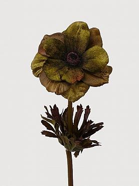 Anemone D11xH68 cm verde
