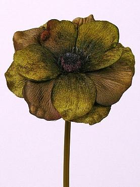 Anemone D12xH25 cm verde - maron