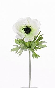 Anemone D6xH32 cm alb