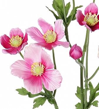 Anemone tros D8x6x4xH53 cm roz