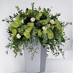 Aranjament cu plante artificiale in Ghiveci Lechuza lucios Mini cubi 18 cm, argintiu