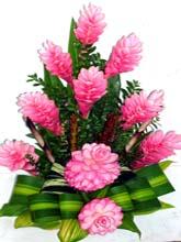 Aranjament Pink Teuila