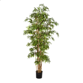 Bambus Japonez 230 cm cu 6288 frunze artificiale
