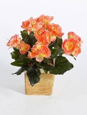 Begonia 38 cm portocaliu - galben