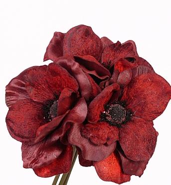 Buchet cu flori de Anemona D15xH20 cm