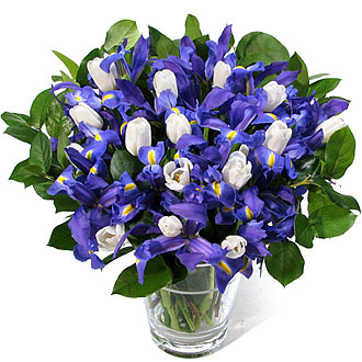 Buchet de iris Primavera Mediu