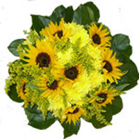 Buchet floarea soarelui The Happiest Flowers