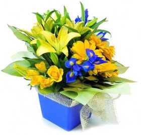 Buchet galben Fresh Bright Flowers