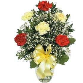 Buchet garoafe multicolore Carnations with Gypsophilia