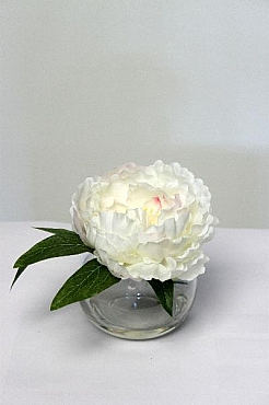 Bujor in vas de sticla 15 cm HO alb Peony