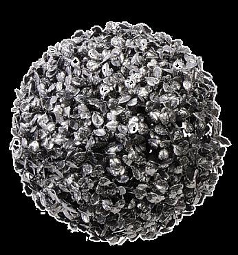 Buxus D12 cm 31484 Cisimir
