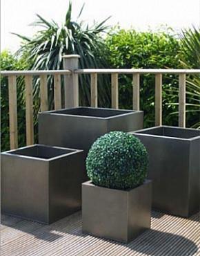 Buxus natural in ghiveci metalic patrat Zinc Metal Colour 50x50x50 cm