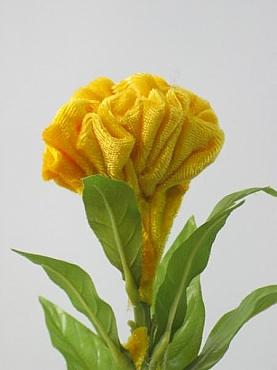 Celosia D7x6xH60 cm HO galben