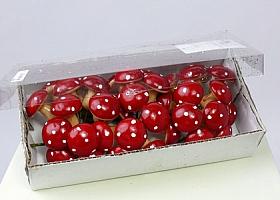 Ciuperci 3.3 cm