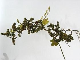 Crenguta cu Fructe de Padure HO verde Berry