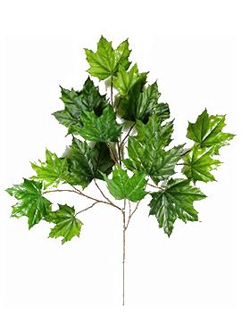 Crenguta cu frunze de Artar 60 cm verde Maple - Acer