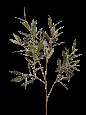 Crenguta cu frunze de Maslin 55 cm verde Olive