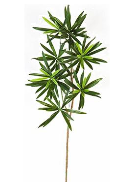 Crenguta cu frunze de Podocarpus 53 cm verde