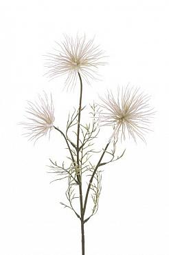 Crenguta de Anemone D12x10x8xH63 cm alb