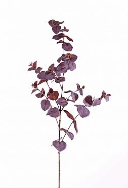 Crenguta de Eucalipt 86 cm burgundy