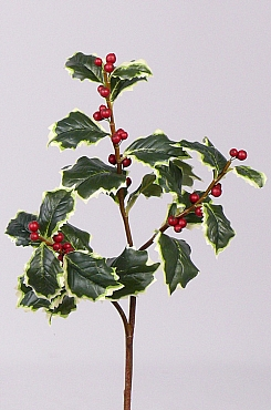 Crenguta Ilex 63 cm rosu Holly berry