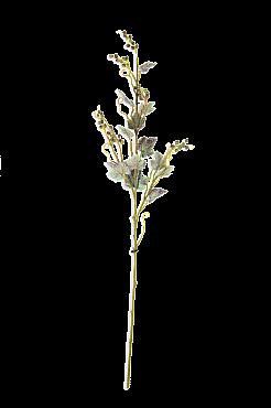 Crenguta Raisin 85 cm verde