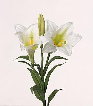 Crin 76 cm alb