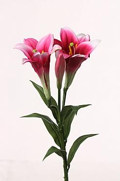 Crin 76 cm fuchsia