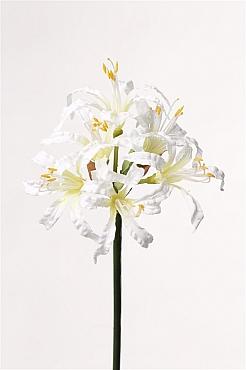 Crin Nerine 71 cm alb