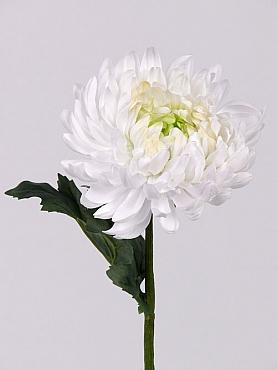 Crizantema 35 cm alb