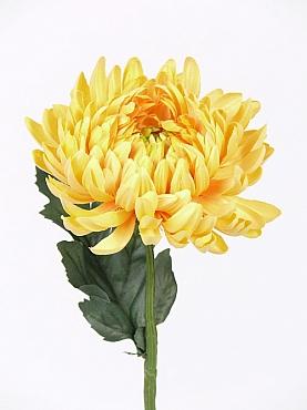 Crizantema D12xH35 cm galben