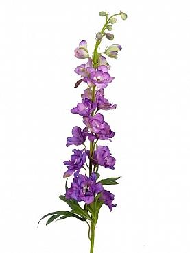 Delphinium H95 cm violet