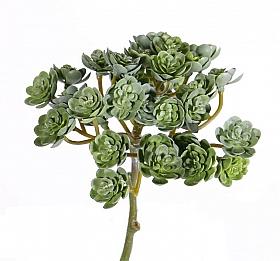Echeveria mini artificiala D12xH19 cm, verde