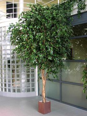 Ficus Exotica artificial Gigant 450 cm