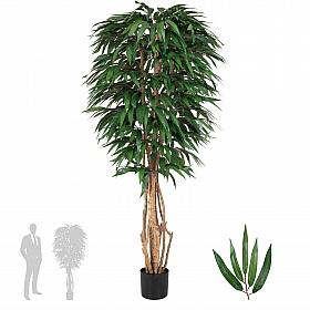 Ficus longifolia artificial H180 cm cu 864 frunze