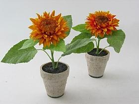 Floarea Soarelui 14 cm HO galben