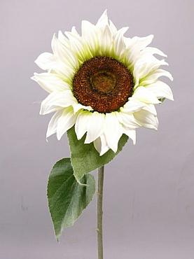 Floarea Soarelui 91 cm alb