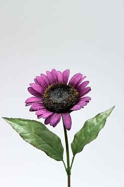 Floarea Soarelui D8xH35 cm HO violet