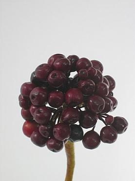 Fructe de padure Ilex 60 cm HO mov
