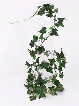 Ghirlanda cu frunze de Iedera Helix 180 cm Hedera
