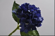 Hortensia 38 cm albastru inchis DE