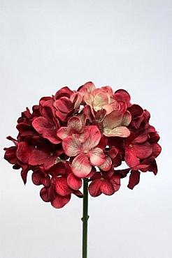 Hortensia 48 cm HO rosu