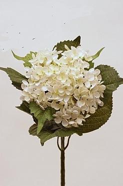 Hortensia 55 cm HO alb